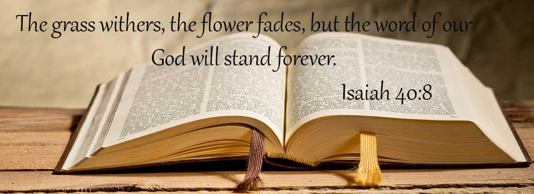Philippians 2:16